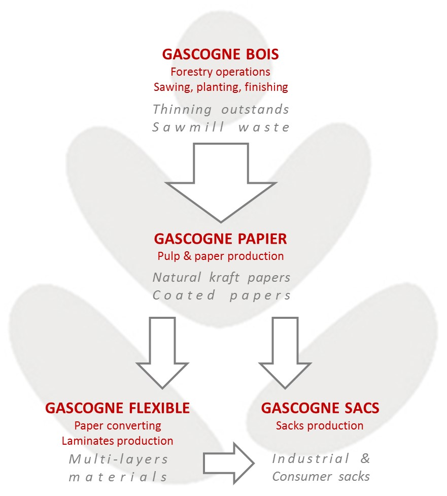 Gascogne, an integrated group
